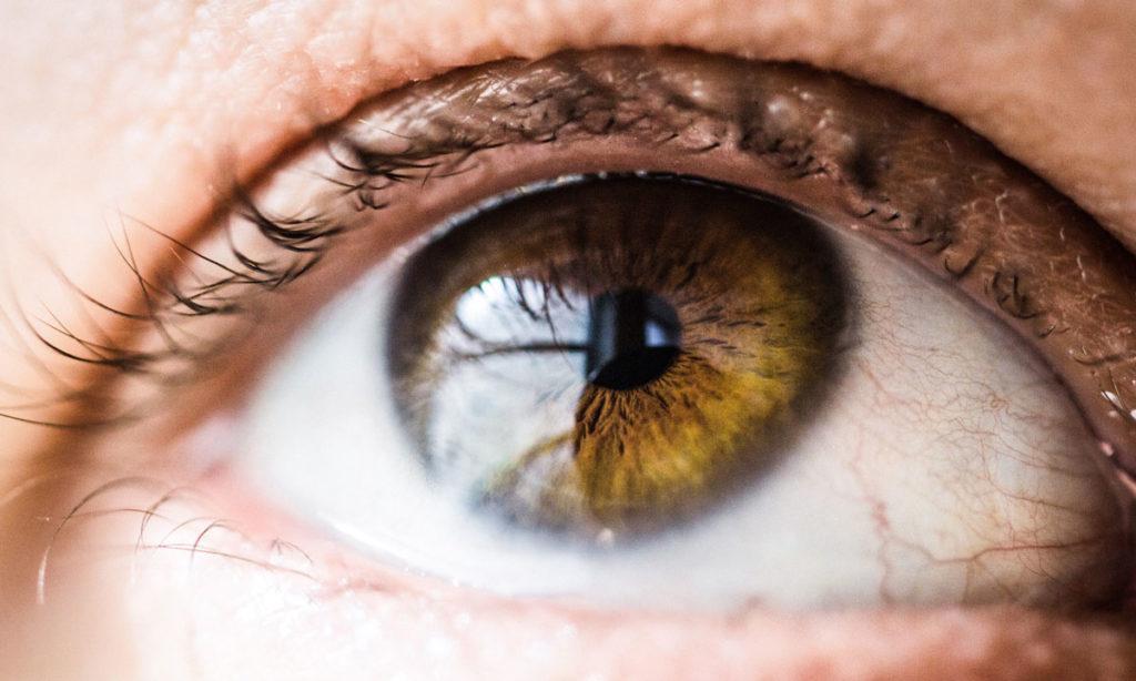 Vision in Retinitis Pigmentosa blog1